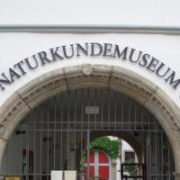 Endlich wieder ins Museum!